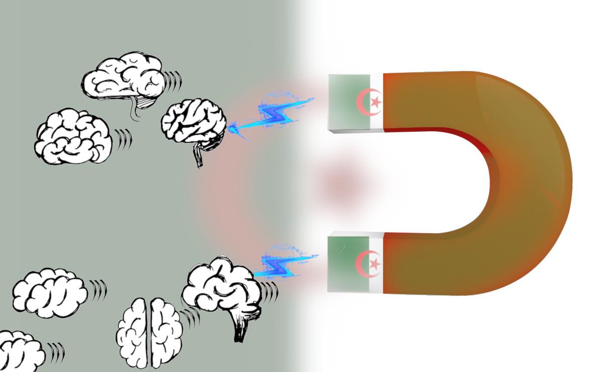 Algeria brain drain